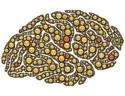 Les 8 pratiques qui vous rendront plus heureux d'après les neurosciences. Rendez votre cerveau plus heureux et positif !