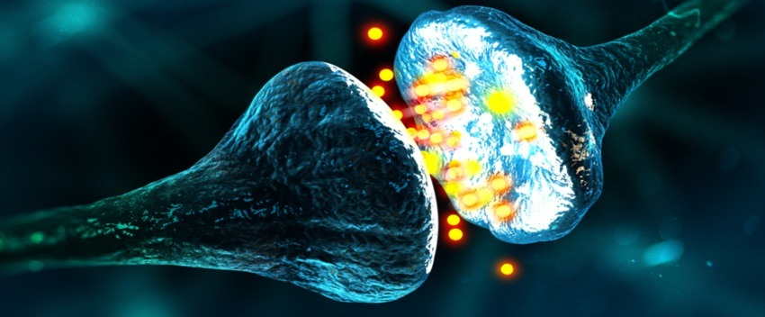 Neurotransmestteurs exemple. Messager chimique pour le bonheur