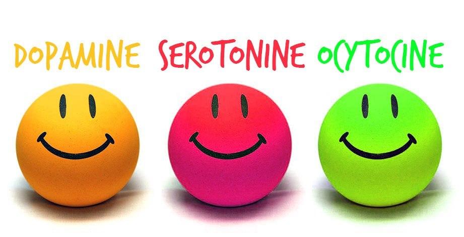 Les hormones du bonheur : dopamine,  serotonine, ocytocine