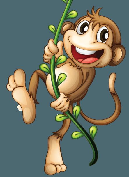 Le singe, roi de la partie émotionnelle du cerveau