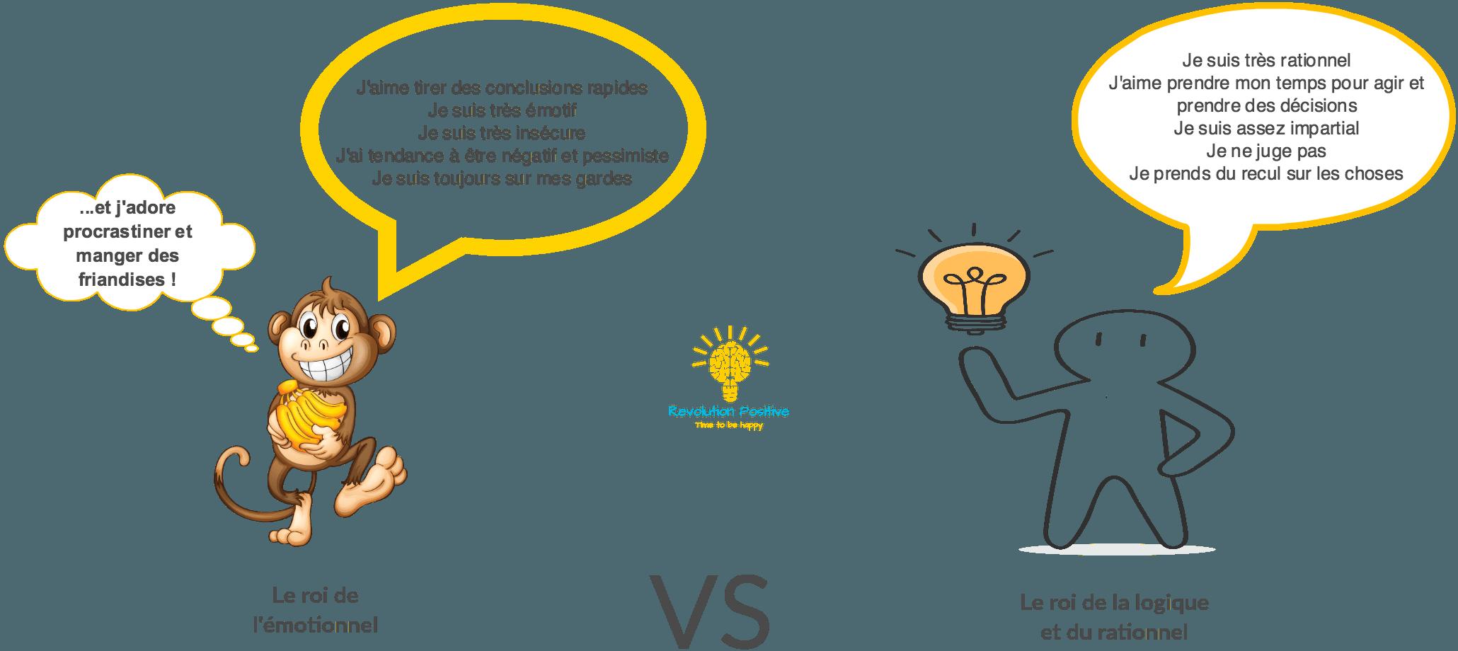 Le cerveau émotionnel versus le cerveau logique. Comment fonctionne les deux parties du cerveau ?
