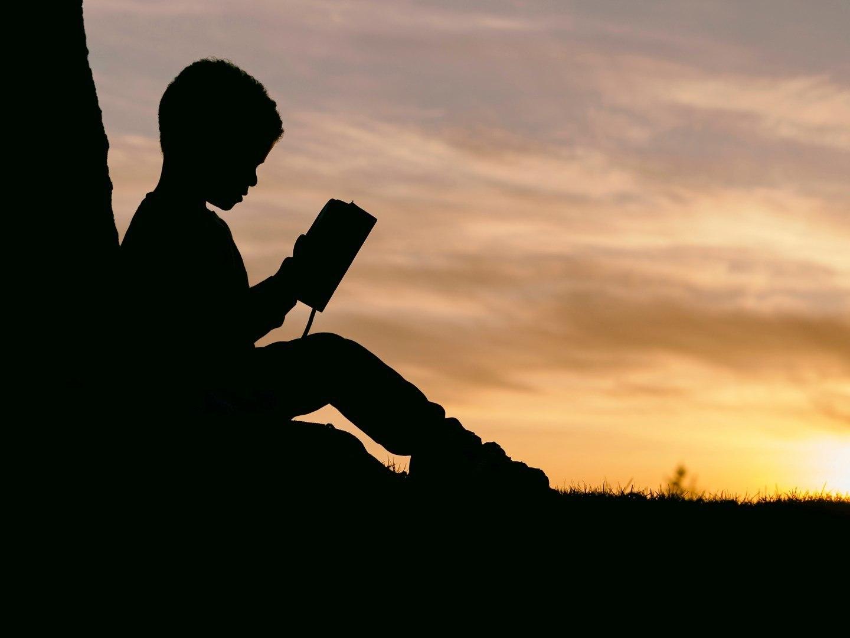 Les meilleurs livres sur la résilience. TED tlak inspirants sur la résilience et résumés pour développer sa résilience.